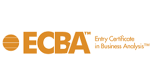 Entry Certificate in Business Analysis (ECBA™) Course